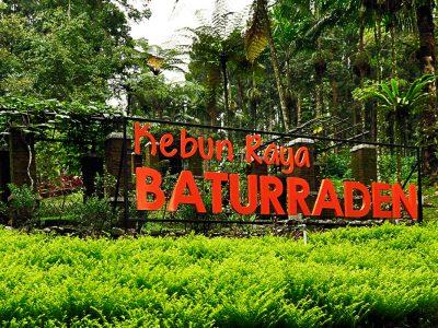 Taman bunga Baturaden